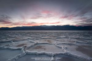 Anne Ferara, Death Valley 2019