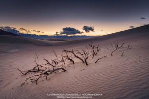 Mihai Fagadar Cosma, Death Valley 2019