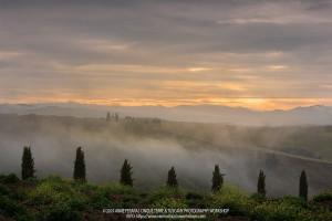 Anne Ferara, Cinque Terre & Tuscany 2019