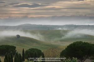 R. F., Cinque Terre & Tuscany October 2019