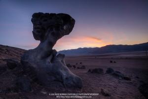 David Newman, Death Valley 2020